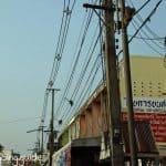 lop buri_monkeys_electricity